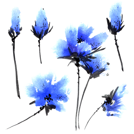 Watercolor and ink illustration of blue flowers. Sumi-e, u-sin painting. Reklamní fotografie
