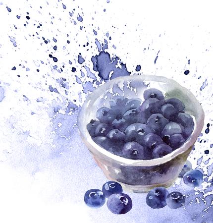 Watercolor blueberry still life Stockfoto