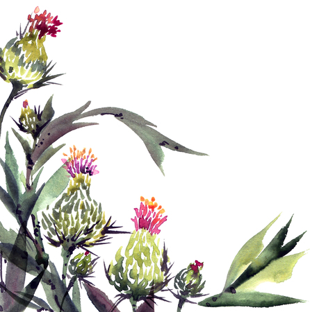Watercolor floral illustration