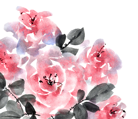 Watercolor and ink illustration of pink roses bouquet, painting on white background, decorative greeting card or invitation design