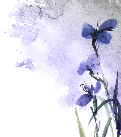 Watercolor and ink painted wild meadow flowers Stockfoto