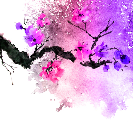 Watercolor and ink illustration of tree branch with flowers, grunge watersplashes texture background, sumi-e and u-sin oriental traditional painting, illustration on white background Stockfoto