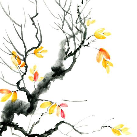 Autumn tree branch Banque d'images - 119530138