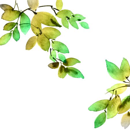 Watercolor tree leaves Banco de Imagens - 120937884