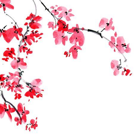 Aquarell- und Tintenillustration des blühenden Sakura-Baumzweigs. Sumi-e, u-sin orientalische traditionelle Malerei.