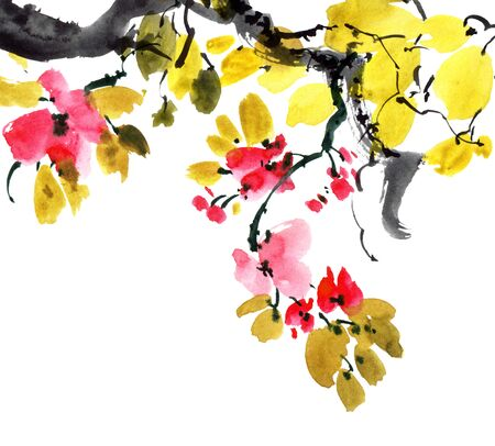 Watercolor and ink illustration of sakura tree with flowers and leaves. Oriental traditionalpainting in style sumi-e, u-sin and gohua. Фото со стока