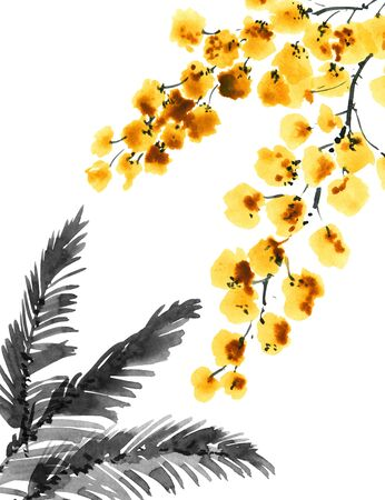 Watercolor and ink illustration of mimosa flowers. Oriental traditional painting in style sumi-e, u-sin and gohua. Stock Illustration - 133503185