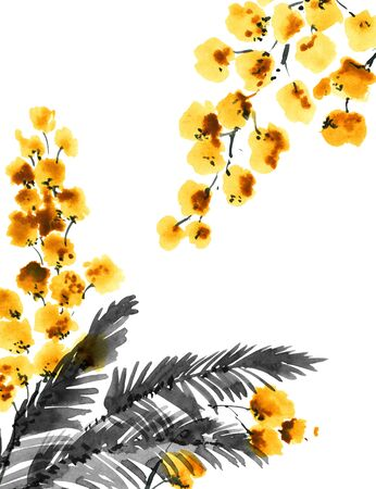 Watercolor and ink illustration of mimosa flowers. Oriental traditional painting in style sumi-e, u-sin and gohua. Stock Illustration - 133503186