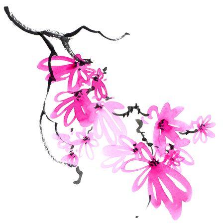Blossom sakura tree branch Stock Photo