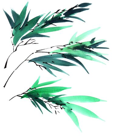 Watercolor and ink illustration of bamboo leaves in style sumi-e, u-sin. Oriental traditional painting.