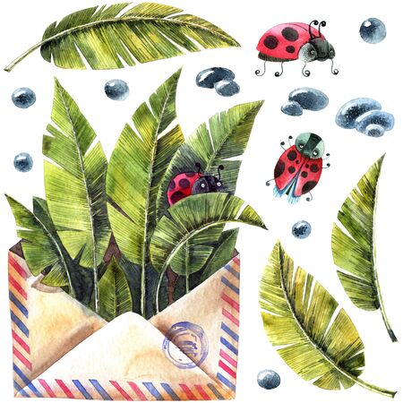 Watercolor illustration of envelop, leaves, ladybug and waterdrops. Artistic spring set.