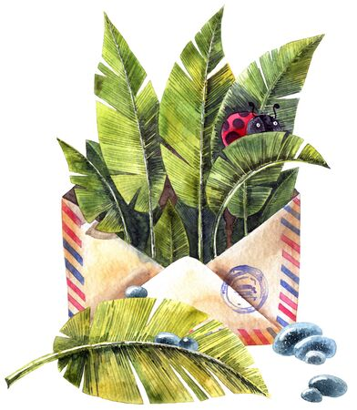 Watercolor illustration of envelop, leaves, ladybug and waterdrops Stockfoto