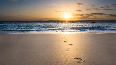 footprints in the sand: footsteps in the sand Stock Photo