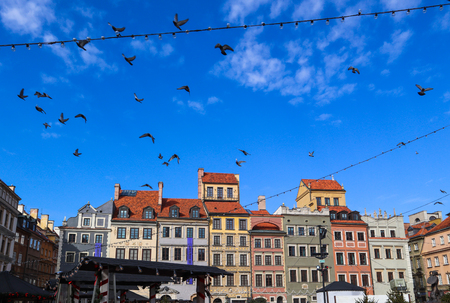 Flying birds over Market Square of the Old Town with Christmas decorations. Warsaw, Poland