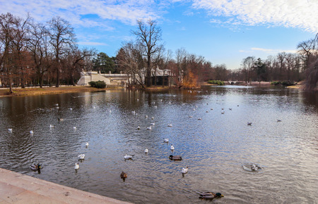 Beautiful lake with birds in Royal Baths Park (Lazienki Park) in spring. Warsaw, Poland