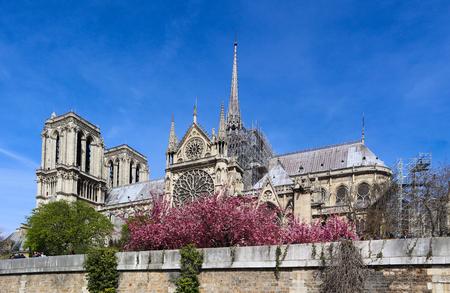 Notre Dame Cathedral in spring. Before the fire. April 05, 2019.  Paris France Reklamní fotografie