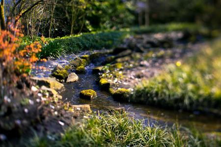 streamlet: Stream in the Keukenhof garden Lisse Netherlands Stock Photo