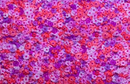 flowers background: flowers background Stock Photo