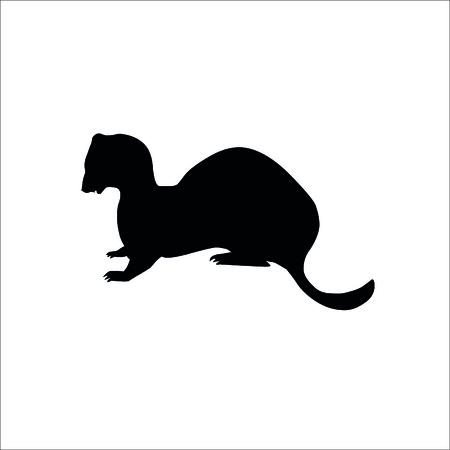Ferret icon on white background. Vector Illustration.