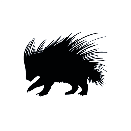 porcupine icon. Vector Illustration
