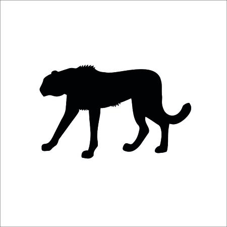 Cheetah icon. Vector Illustration