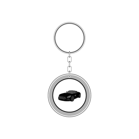 Key chain for car. Vector Illustration Archivio Fotografico - 100414458