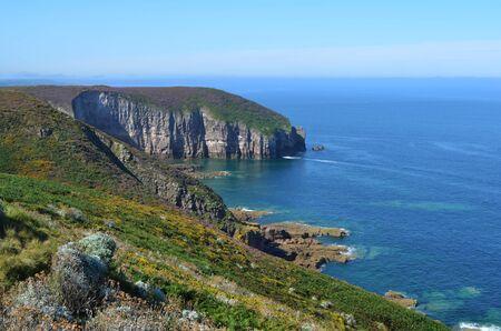 Green cliffs overlook coastal ocean
