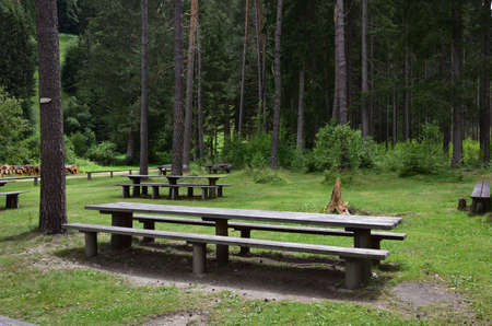 A place in the woods well organized for a picnic Stock Photo