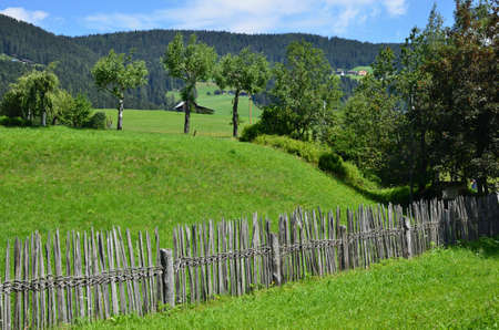 An old rustic fence on the green lawn