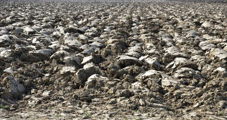 Clods of earth crushed, turned, worked to prepare the field for sowing Stock Photo