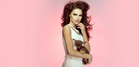Attractive beautiful brunette woman with long curly hair posing in studio, holding little sweet dog. Standard-Bild