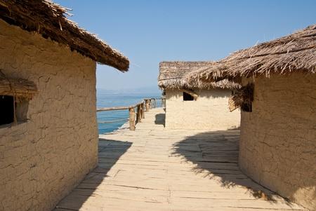 pile dwelling: tropical huts