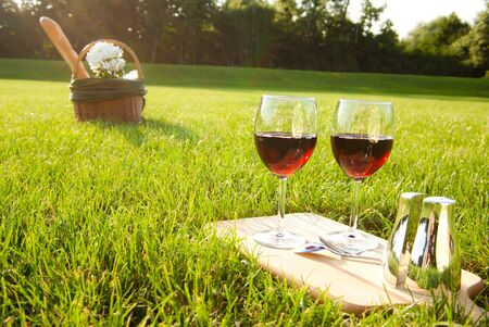 melon field: red wine and picnic basket