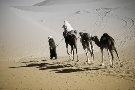 camel carivan on the desert photo