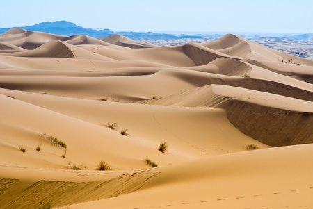 desert in Morroco photo