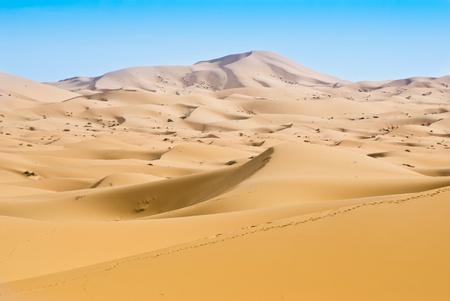 woestijn duinen Stockfoto