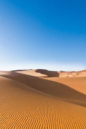 sahara duinen