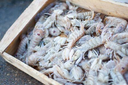 sea food: sea food, raw prawn  Stock Photo