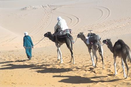 camel ride on the Sahara desert photo