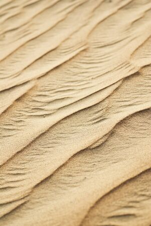 sand waves photo
