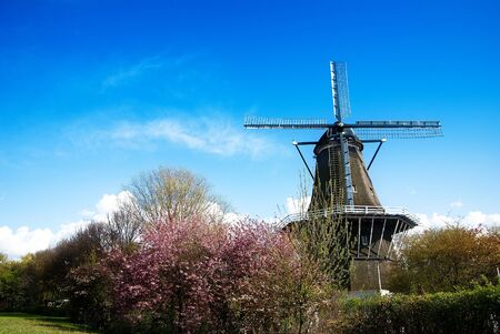 windmill in Amsterdam photo