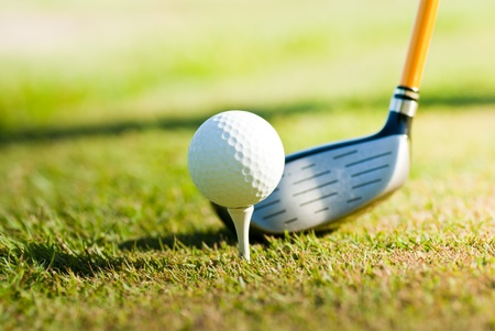 shiny golf club on a golf course  photo