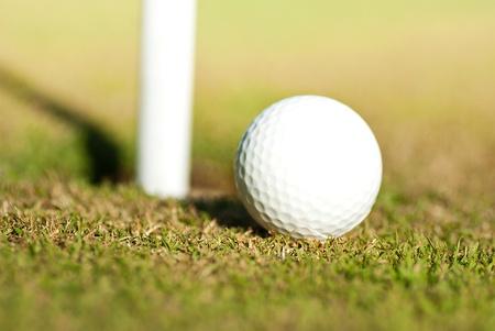 ball near the hole photo