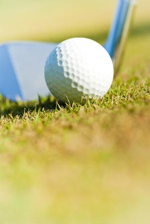 close up ofgolf ball on course  photo