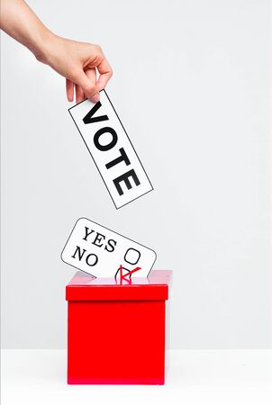 hustings: election fever
