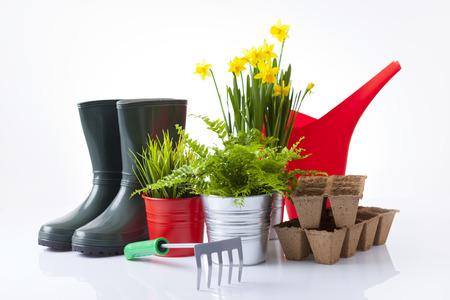 tuingereedschap en tuin bloemen op wit wordt geïsoleerd Stockfoto