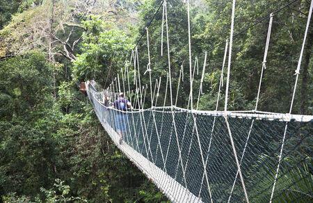 Taman Negara National Park  Malaysia Stock Photo - 28313752
