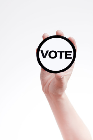 electoral system: election campaign,voting