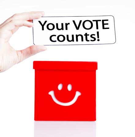 local council election: election campaign,voting