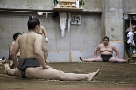 wrestle: TOKYO, JAPAN - May 18, 2016: Japanese sumo wrestler training in Their stall in Tokyo on May 18. 2016